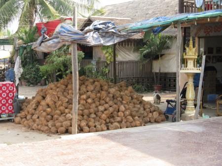 Kokosnusslager